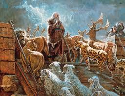 Las 13 cosas que aprendimos del Arca de Noé